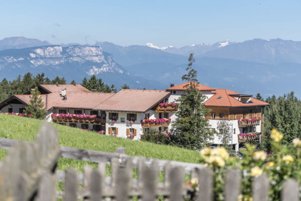 WEB 7168 600x400 - Hotel Peter **** - hotel-partner-