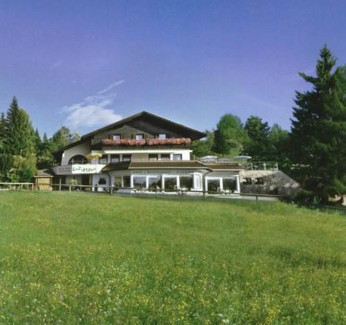 Gasthof-Albergo-Wieser***