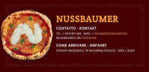 Nussbaumer Logo Large 300x146 - Nussbaumer Golf Trophy 2017