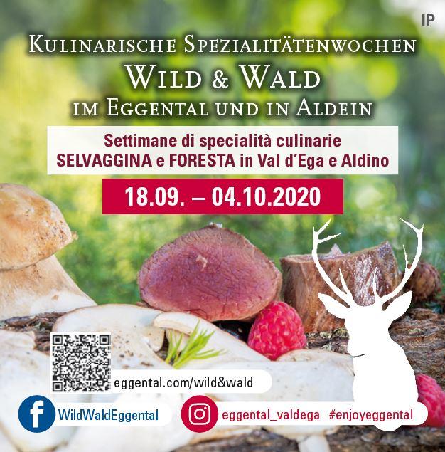 Wildwochen 1 - Ristorante - -